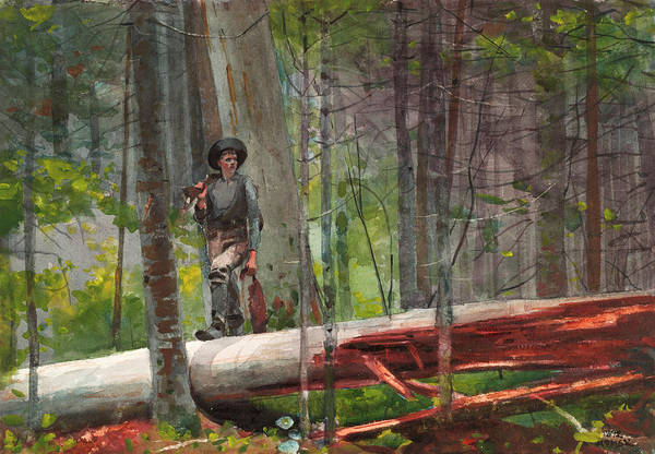 Bird In Tree Wall Art - Painting - Hunter In The Adirondacks by Winslow Homer