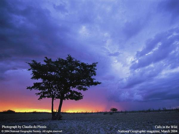 Sunset Digital Art - Landscape by Maye Loeser