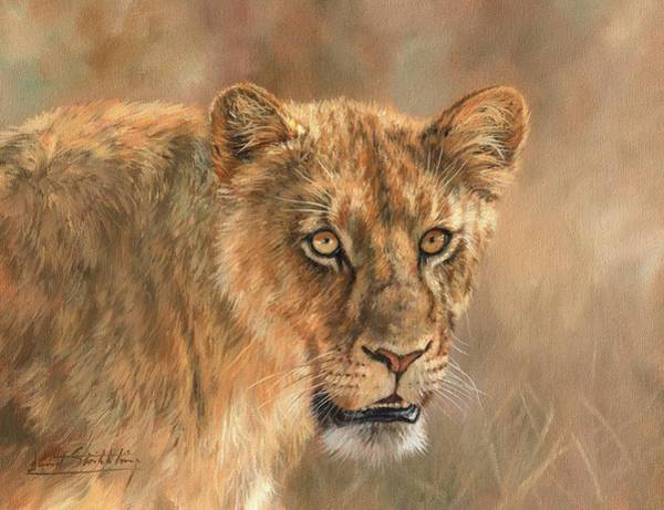 Painting - Lioness by David Stribbling