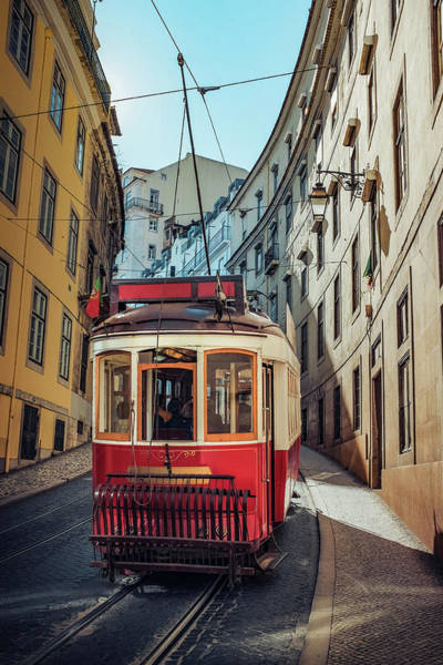 Wall Art - Photograph - Lisbon Tram by Carlos Caetano