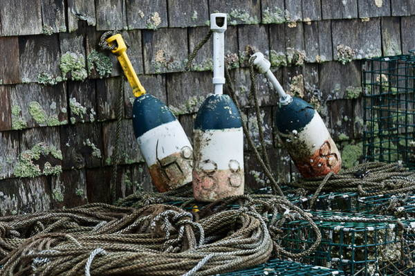 Lobstering Photograph - Lobster Buoys by John Greim