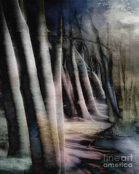 Digital Art - Magic Of The Woods by Edmund Nagele