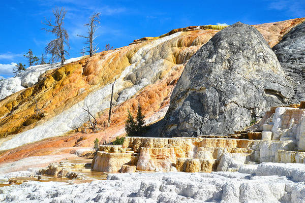 Photograph - Mammoth Hot Springs by Ray Mathis