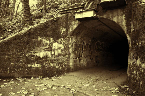 Photograph - End Of The Tunnel - Sepia by Marilyn Wilson