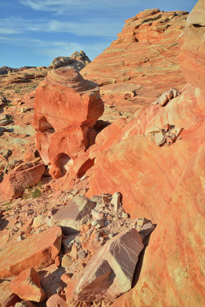 Photograph - Morning Light On Valley Of Fire by Ray Mathis