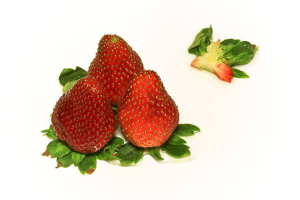 Berry Fruit Photograph - 4... No... 3 Strawberries by Evelina Kremsdorf