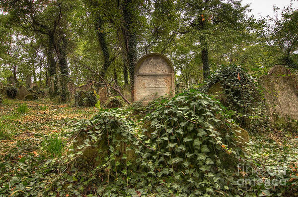 Famous Cemeteries Photograph - Old Jewish Cemetery by Michal Boubin
