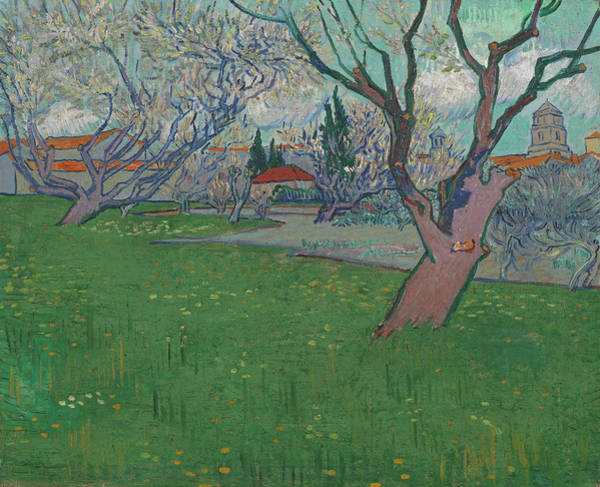 Almond Painting - Orchards In Blossom, View Of Arles by Vincent van Gogh