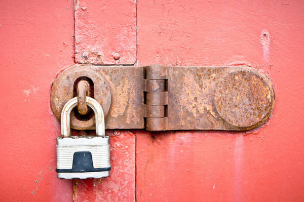 Chain Link Photograph - Padlock by Tom Gowanlock