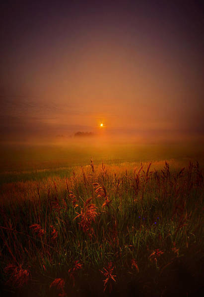 Photograph - Peace Of Mind by Phil Koch