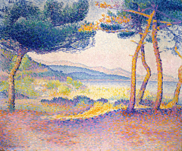 Painting - Pines Along The Shore by Henri-Edmond Cross
