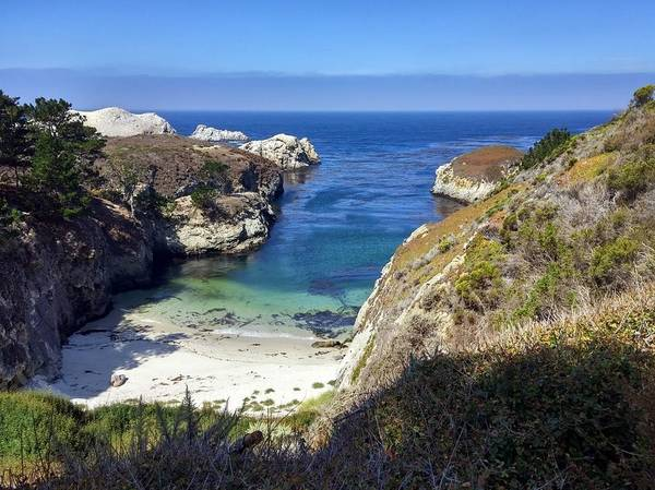 Photograph - Point Lobos Small Cove by Richard Yates