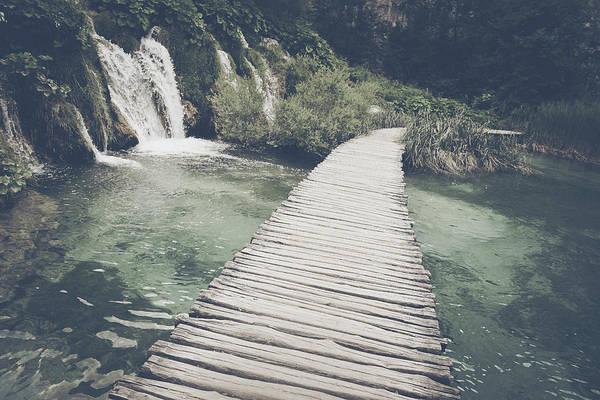 Photograph - Retro Hiking Path by Brandon Bourdages