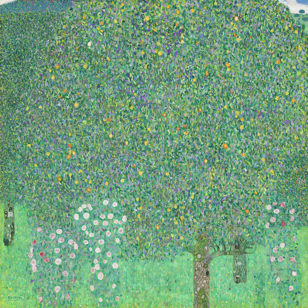 Wall Art - Painting - Rosebushes Under The Trees by Gustav Klimt