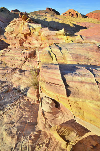 Photograph - Sandstone Crest In Valley Of Fire by Ray Mathis
