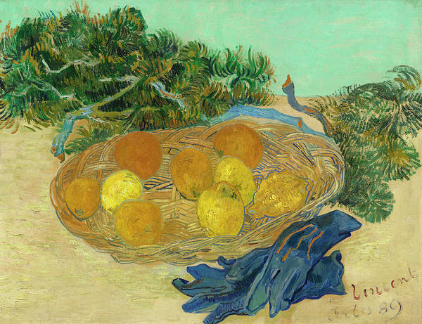 Painting - Still Life Of Oranges And Lemons With Blue Gloves by Vincent Van Gogh