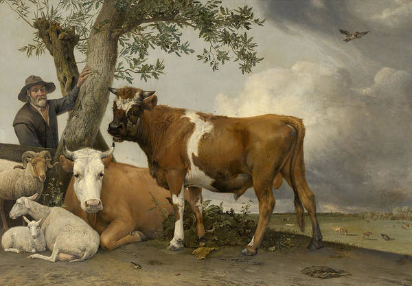 Wall Art - Painting - The Bull by Paulus Potter