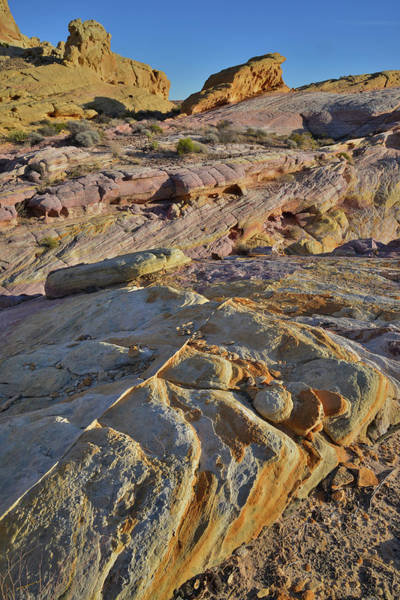 Photograph - The Colors Of Valley Of Fire by Ray Mathis