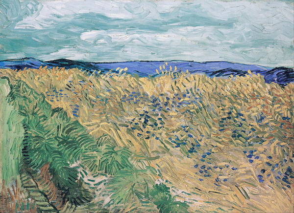 Barley Painting - Wheat Field With Cornflowers   by Vincent Van Gogh