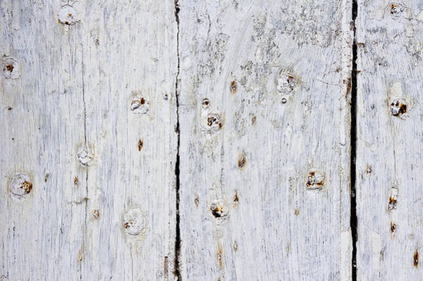 Wood Siding Wall Art - Photograph - White Wood by Tom Gowanlock