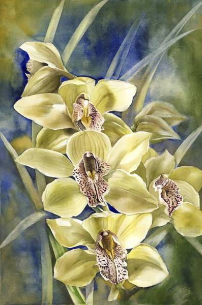 Painting - Yellow Cymbidium Orchid by Alfred Ng