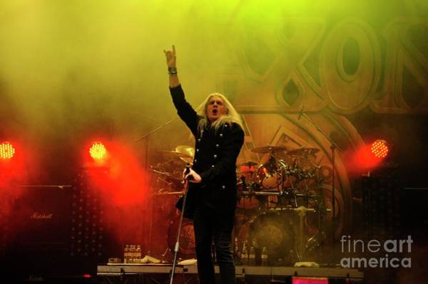 Photograph - Saxon by Jenny Potter