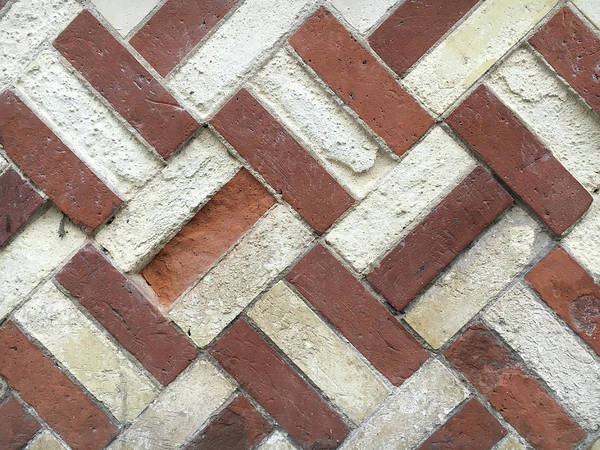 Wall Art - Photograph - Brick Wall by Tom Gowanlock