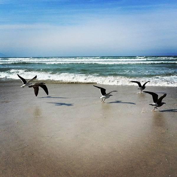 Photograph - Instagram Photo by Jaynie Lea