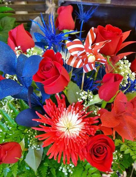 Wall Art - Photograph - 4th Of July Surprise  by Gayle Miller