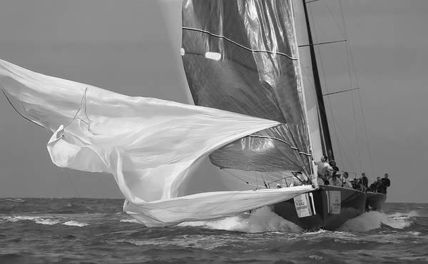 Photograph - Classic Regatta by Steven Lapkin