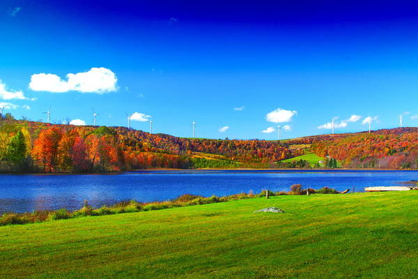 Somerset County Photograph - Cranberry Glade Lake by Tammy  McGogney