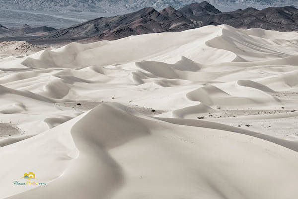Photograph - Dumont Dunes 5 by Jim Thompson
