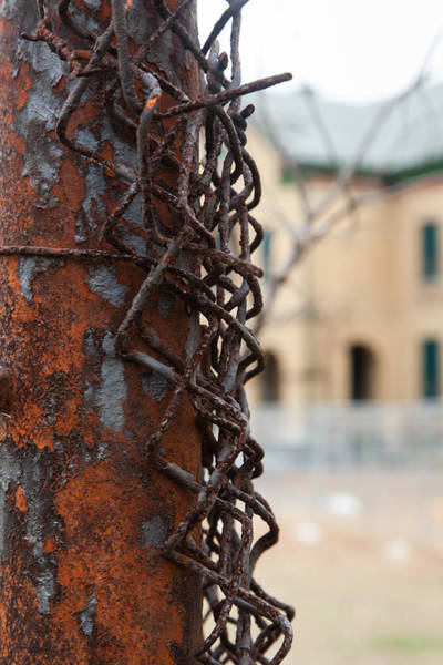 Chain Link Photograph - Fort Hancock by Erin Cadigan