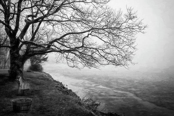 Photograph - Green Pond New Jersey Winter C410 by Rich Franco