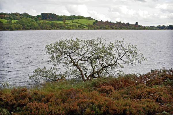 Photograph - Lough Fea by Colin Clarke