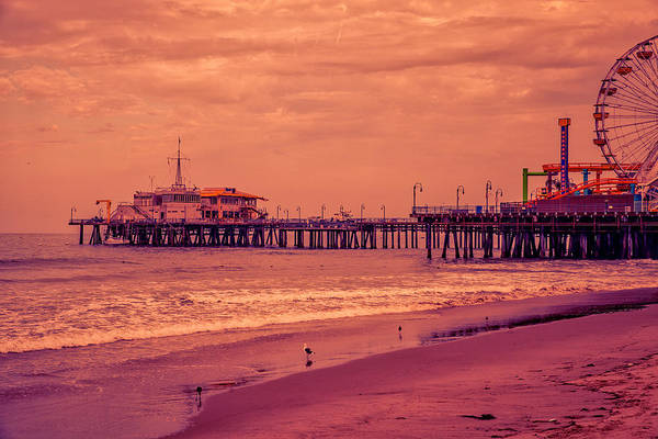 Photograph - Santa Monica Pier Collection- 9/36 by Gene Parks
