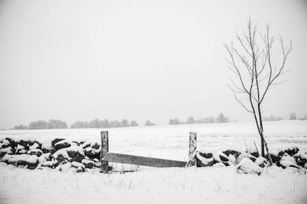 Photograph - Spring Snow by Robert Clifford