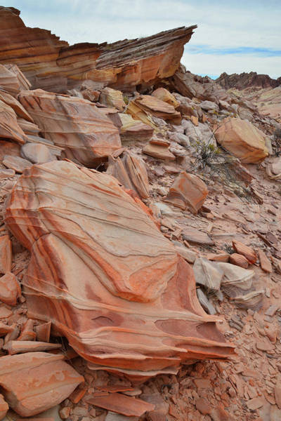Photograph - Stacks Of Color In Valley Of Fire by Ray Mathis