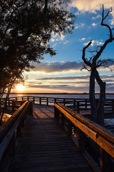Photograph - Sunset On The Cape Fear River by Willard Killough III