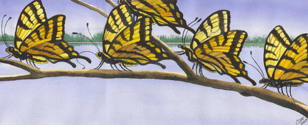 Painting - 5 Swallowtails by Catherine G McElroy