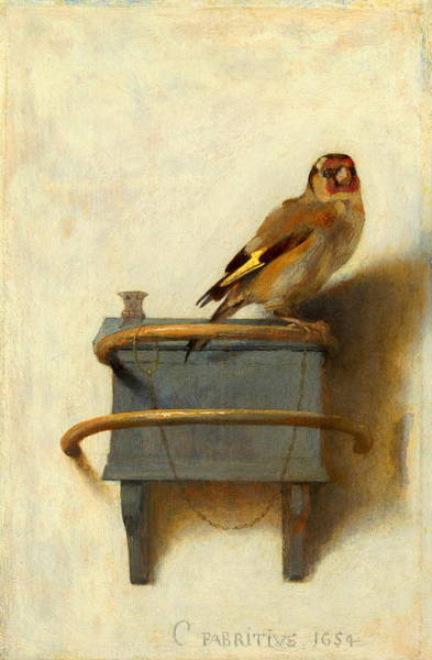 Canaries Painting - The Goldfinch by Carel Fabritius