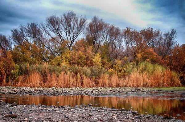 Photograph - The Salt River by Tam Ryan