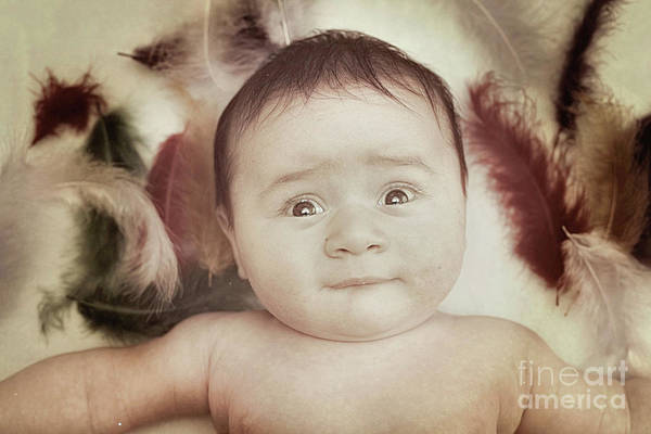 Awake Wall Art - Photograph - Three Month Old Baby Boy by Tom Gowanlock