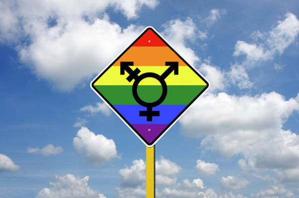 Unisex Photograph - Transgender Lgbt Road Sign In Front Of A Blue Sky by Craig McCausland