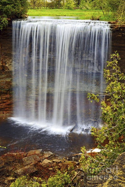 Wall Art - Photograph - Waterfall by Elena Elisseeva