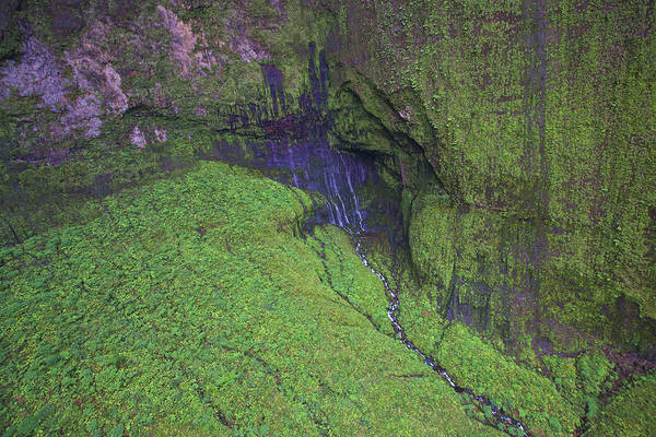 Photograph - Weeping Wall Kauai by Steven Lapkin