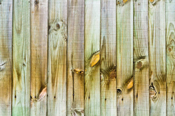 Wood Siding Wall Art - Photograph - Wooden Fence by Tom Gowanlock