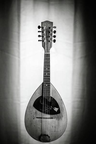 Photograph - 50.1845 Framus Mandolin by M K Miller