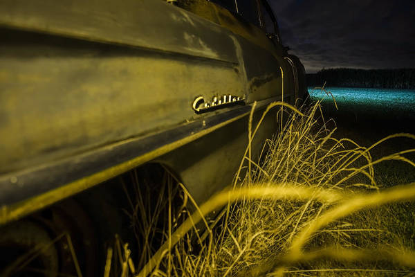 Photograph - 50's Cadillac Logo At Night In Yellow Light By A Cornfield  by Sven Brogren