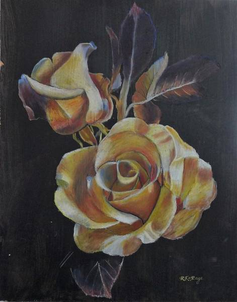 Pastel - 50th Anniversary Rose by Richard Le Page